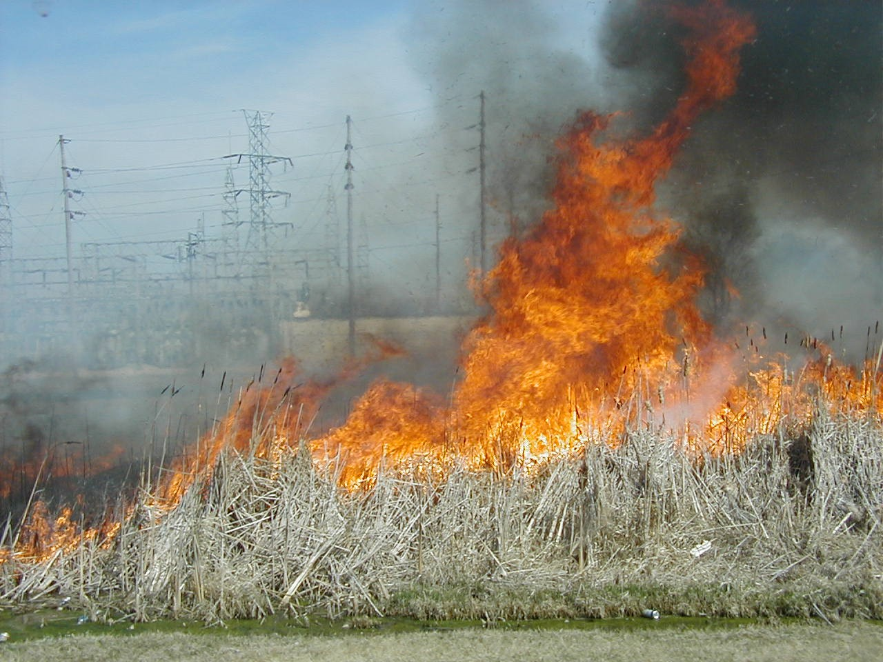 2003 Tax Day Grass Fire